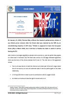 Issue Brief on The Future of Brexit